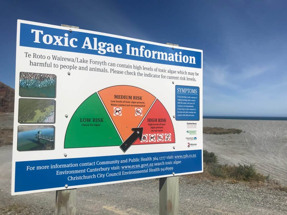 A number of health warnings still remain in place for algal blooms in Canterbury and South Canterbury.