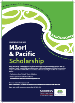 Information about the Māori and Pasifika Health Scholarships